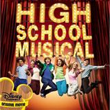 High School Musical:Stick To The Status Quo
