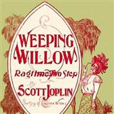 Weeping Willow Rag sheet music by Scott Joplin