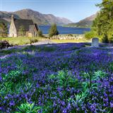 The Blue Bells Of Scotland sheet music by Mrs. Jordon