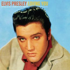 Elvis Presley Don't Leave Me Now cover art