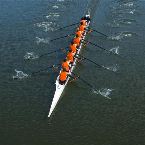 P. Guglielmo Rowing cover art