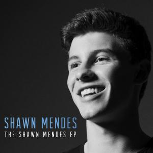 Shawn Mendes Life Of The Party cover art