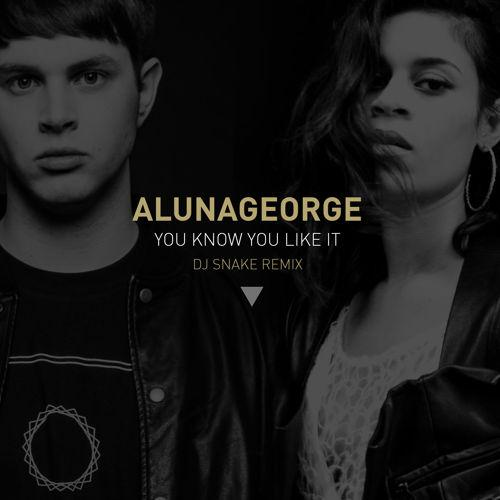 DJ Snake & AlunaGeorge You Know You Like It cover art