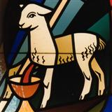 Richard Donn:Lamb