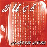 Glycerine sheet music by Bush