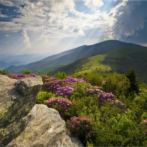 Tom Lough Appalachian Psalm (arr. Jon Paige) cover art