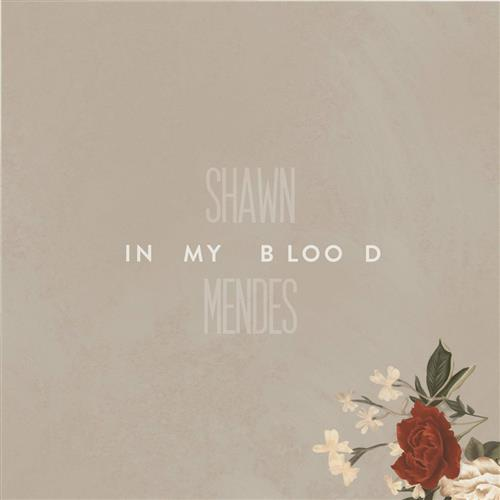Shawn Mendes In My Blood (arr. Jacob Narverud) cover art