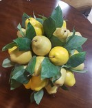 Decorative-pear-tree-10-H_5555A.jpg