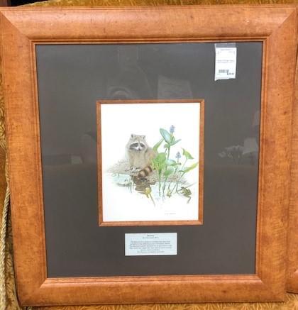 Framed-Animals-Nature-Prints-from-Jasper-Park-Lodge_5428B.jpg