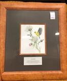 Framed-Animals-Nature-Prints-from-Jasper-Park-Lodge_5428C.jpg