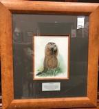 Framed-Animals-Nature-Prints-from-Jasper-Park-Lodge_5428D.jpg