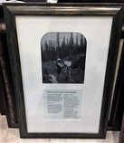 Framed-Art.--Railway-Artists-of-the-Canadian-Rockies_4836A.jpg