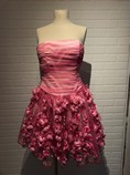 CW-Design-Size-Medium-Pink-Dress_4791A.jpg