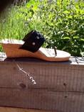Ugg-Sandals_405057B.jpg