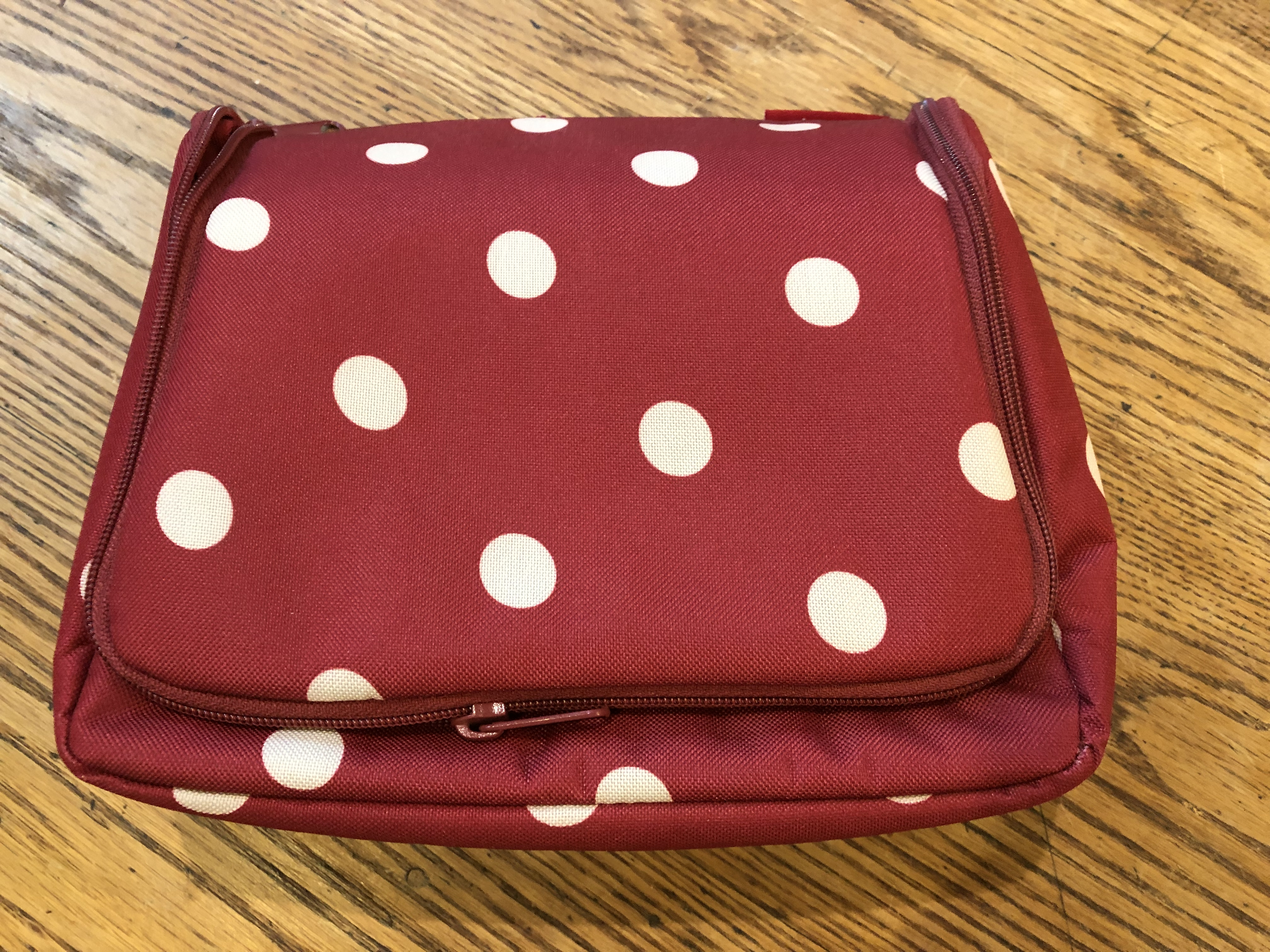 red-white-polka-dot-travel-toiletry-organizer_138439A.jpg
