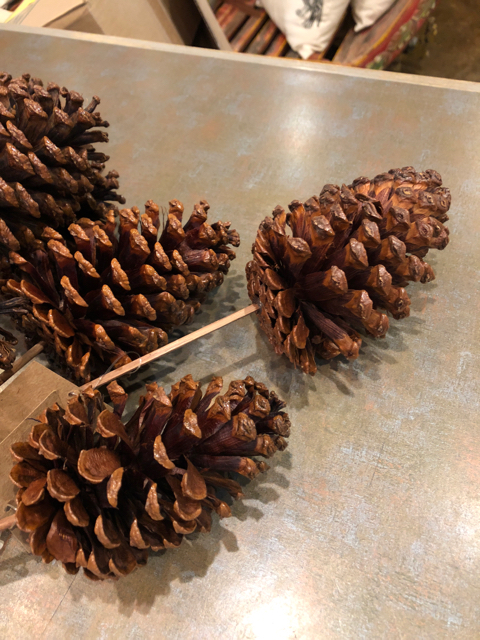 Lacquered Natural Pine Cone Pick_29773A