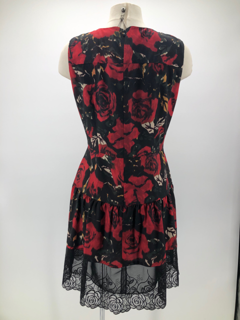 Size-12-Anna-Sui-Polyester-Floral-Dress_1104096C.jpg