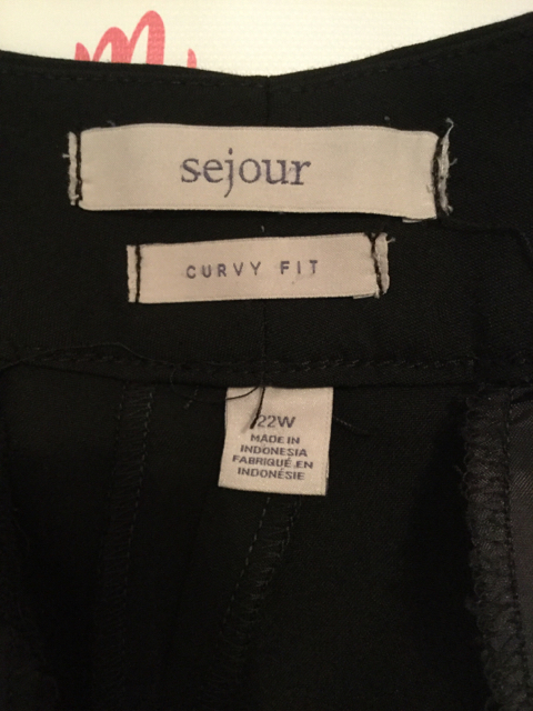 Sejour-Size-22W-Curvy-Fit-Black-Pants_2807C.jpg