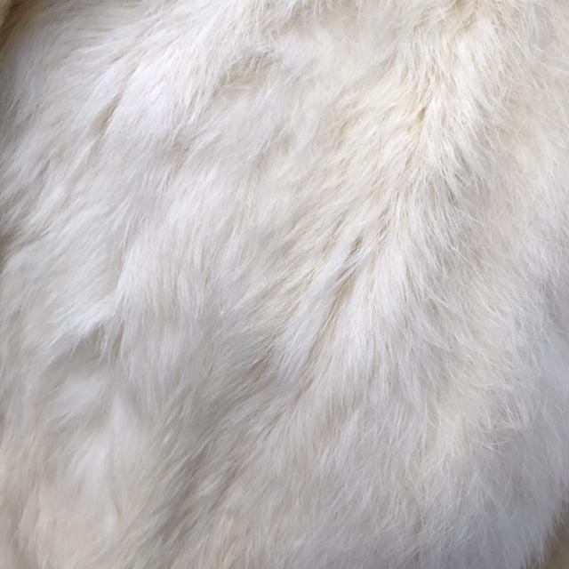 Size-S-Coat_190849D.jpg