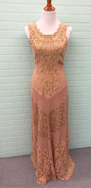 NWT-Champagne--Strawberry-Size-S-Small-Nude-Dress-Gown-Lace_6738A.jpg