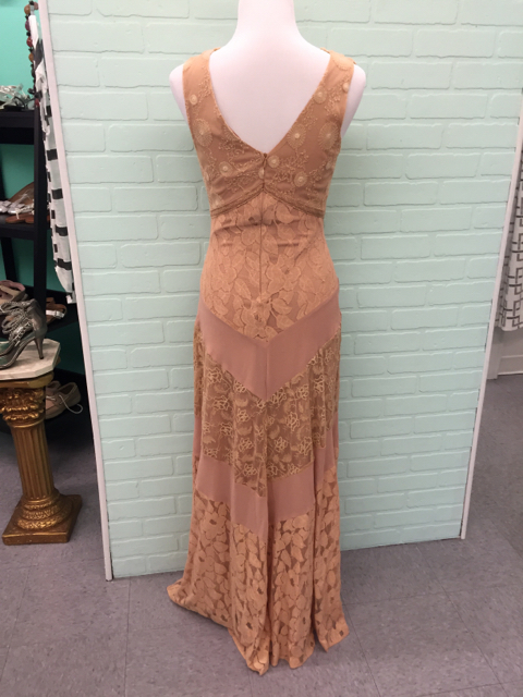 NWT-Champagne--Strawberry-Size-S-Small-Nude-Dress-Gown-Lace_6738E.jpg