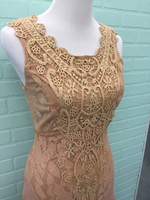 NWT-Champagne--Strawberry-Size-S-Small-Nude-Dress-Gown-Lace_6738H.jpg