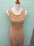 NWT-Champagne--Strawberry-Size-S-Small-Nude-Dress-Gown-Lace_6738B.jpg