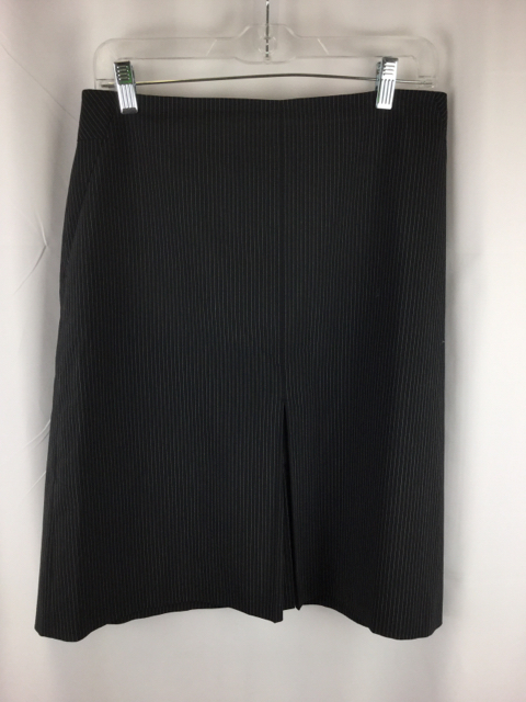 LOFT-Size-10-Skirt_221333B.jpg