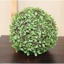 Polyvest-Vine-Grass-Ball_71635B.jpg