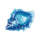 Ocean-Blue-Conch-Plate_15140A.jpg