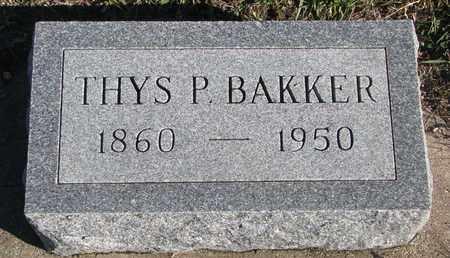 BAKKER, THYS P. - Bon Homme County, South Dakota | THYS P. BAKKER - South Dakota Gravestone Photos
