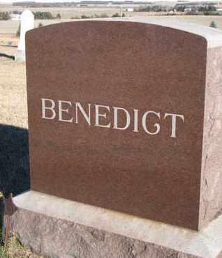 BENEDICT, FAMILY STONE - Bon Homme County, South Dakota | FAMILY STONE BENEDICT - South Dakota Gravestone Photos