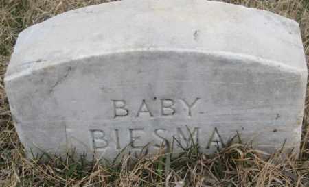 BIESMA, BABY - Bon Homme County, South Dakota | BABY BIESMA - South Dakota Gravestone Photos