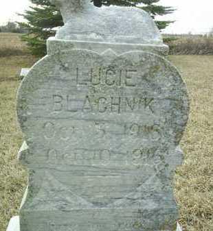 BLACHNIK, LUCIE - Bon Homme County, South Dakota | LUCIE BLACHNIK - South Dakota Gravestone Photos