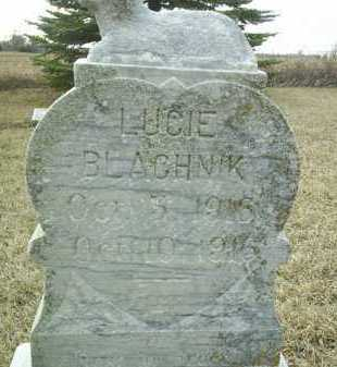 BLACHNIK, LUCIE - Bon Homme County, South Dakota | LUCIE BLACHNIK - South Dakota Gravestone Photos