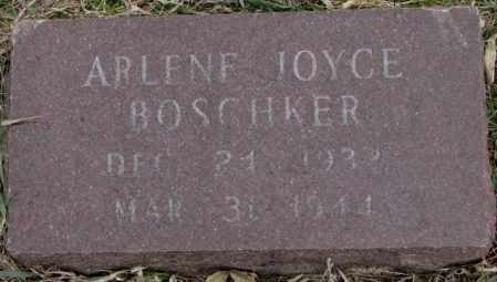 BOSCHKER, ARLENE JOYCE - Bon Homme County, South Dakota | ARLENE JOYCE BOSCHKER - South Dakota Gravestone Photos