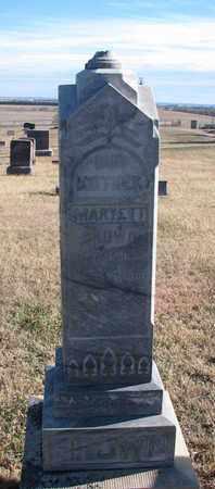 BROWN, MARYETT - Bon Homme County, South Dakota | MARYETT BROWN - South Dakota Gravestone Photos