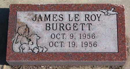 BURGETT, JAMES LE ROY - Bon Homme County, South Dakota | JAMES LE ROY BURGETT - South Dakota Gravestone Photos