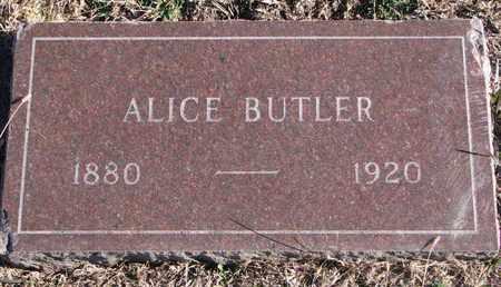 BUTLER, ALICE - Bon Homme County, South Dakota | ALICE BUTLER - South Dakota Gravestone Photos