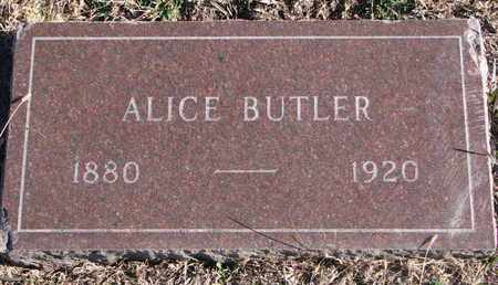 BUTLER, ALICE - Bon Homme County, South Dakota | ALICE BUTLER - South Dakota Gravestone Photos