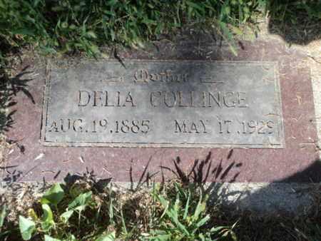 HOLBERT COLLINGE, MARY DELIA - Bon Homme County, South Dakota   MARY DELIA HOLBERT COLLINGE - South Dakota Gravestone Photos