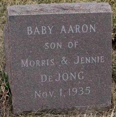 DE JONG, AARON - Bon Homme County, South Dakota | AARON DE JONG - South Dakota Gravestone Photos