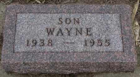 DE JONG, WAYNE - Bon Homme County, South Dakota | WAYNE DE JONG - South Dakota Gravestone Photos