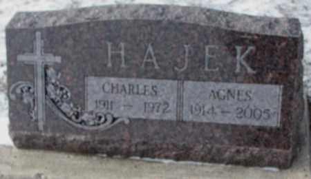 HAJEK, AGNES - Bon Homme County, South Dakota | AGNES HAJEK - South Dakota Gravestone Photos