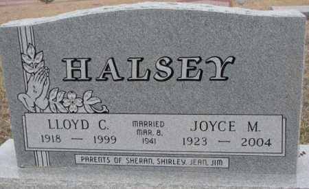 HALSEY, JOYCE M. - Bon Homme County, South Dakota | JOYCE M. HALSEY - South Dakota Gravestone Photos
