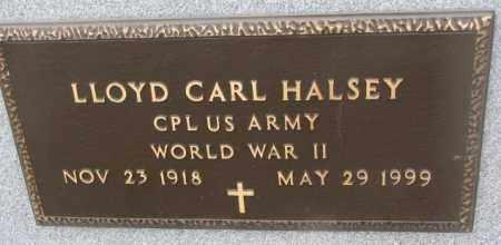 HALSEY, LLOYD CARL (WW II) - Bon Homme County, South Dakota   LLOYD CARL (WW II) HALSEY - South Dakota Gravestone Photos