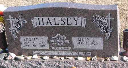 HALSEY, RONALD E. - Bon Homme County, South Dakota   RONALD E. HALSEY - South Dakota Gravestone Photos