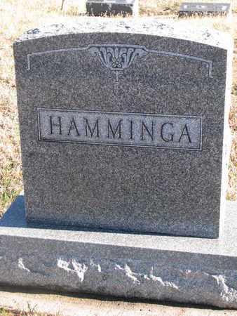 HAMMINGA, FAMILY STONE - Bon Homme County, South Dakota | FAMILY STONE HAMMINGA - South Dakota Gravestone Photos