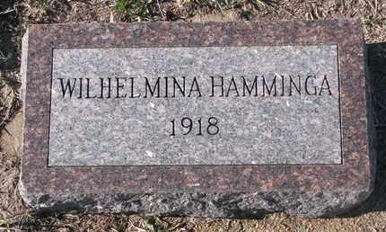 HAMMINGA, WILHELMINA - Bon Homme County, South Dakota | WILHELMINA HAMMINGA - South Dakota Gravestone Photos