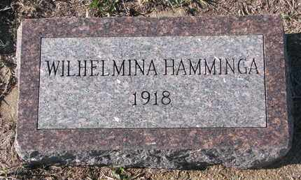 HAMMINGA, WILHELMINA - Bon Homme County, South Dakota | WILHELMINA HAMMINGA - South Dakota Gravestone Photos